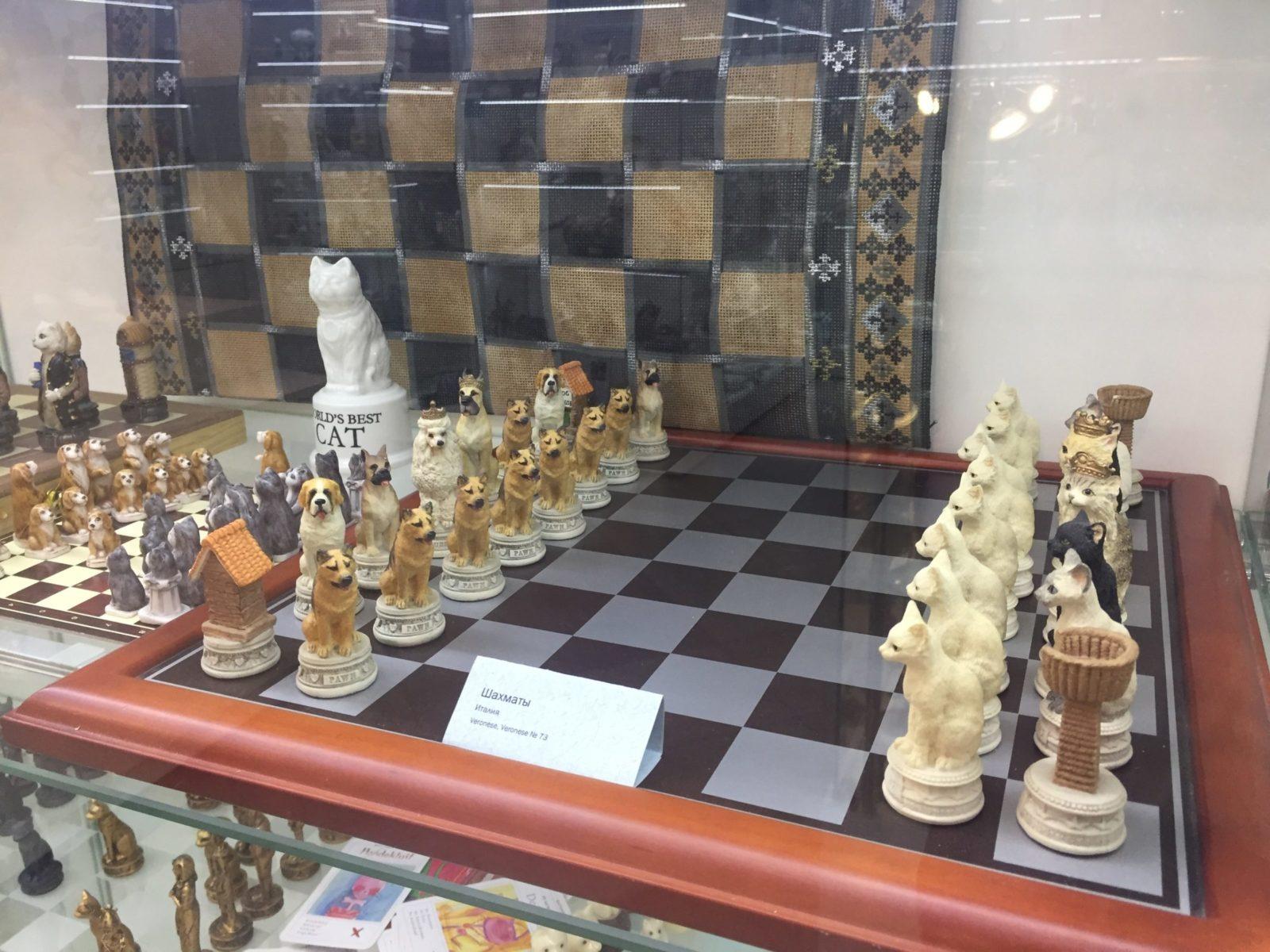Шахматы с изображением котов. Фото: Ирина КОМИК