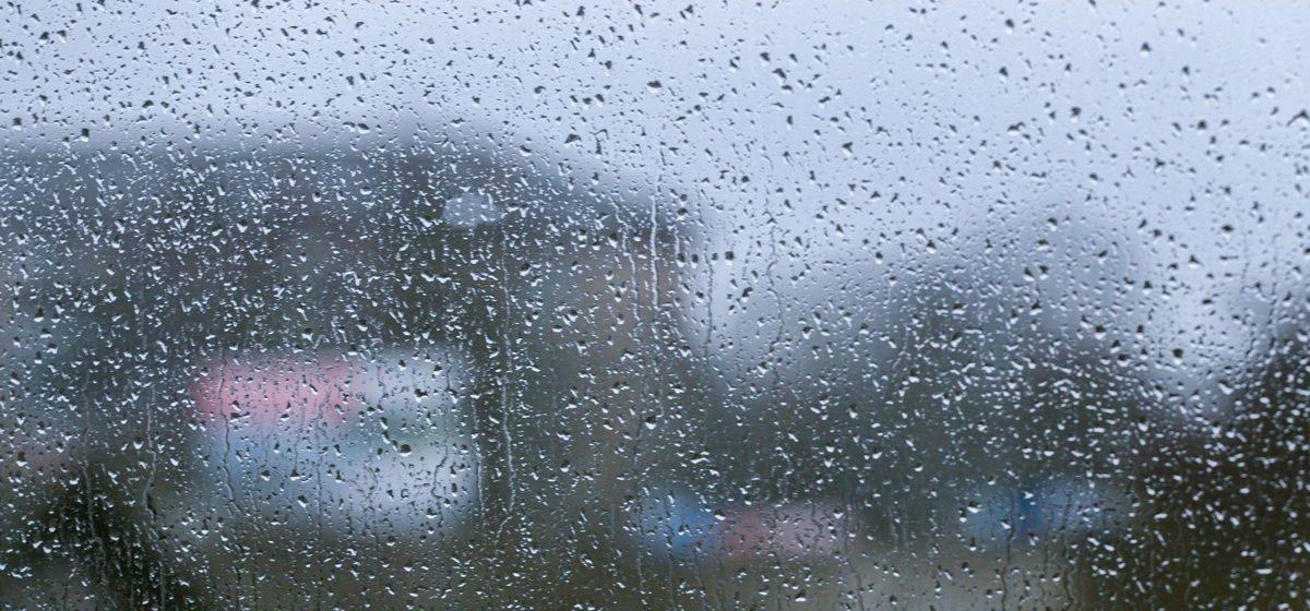 Осадки и сильный ветер. Метеорологи рассказали о погоде в Барановичах на этой неделе