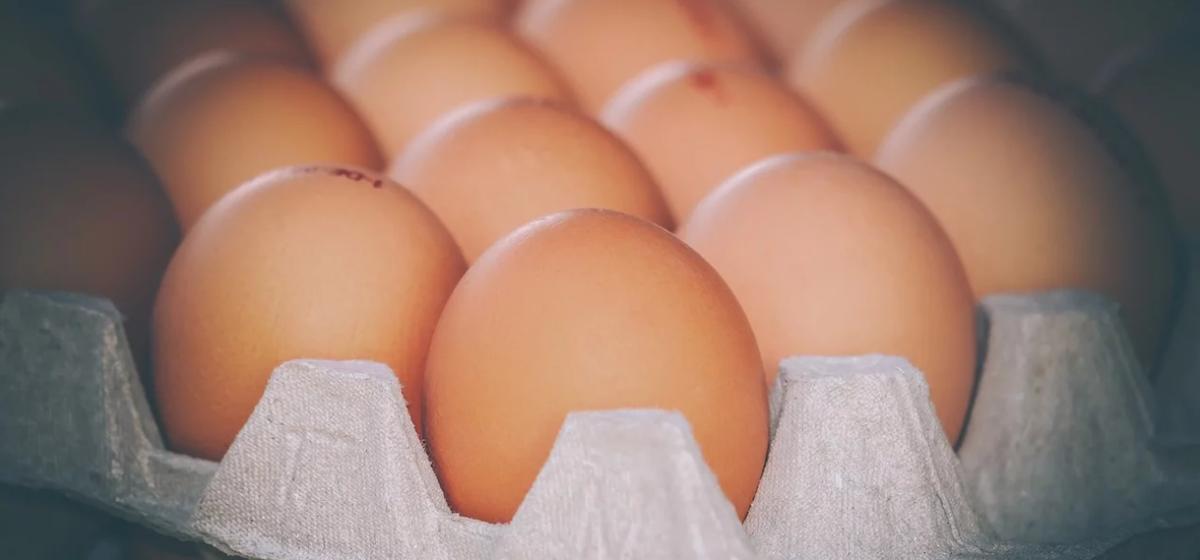 Ученые рассказали, как влияет одно куриное яйцо в день на организм