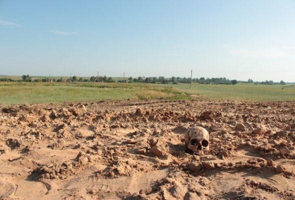 Тракторист нашел под Барановичами человеческие останки, перезахоронил их, а через несколько месяцев заявил об этом в милицию