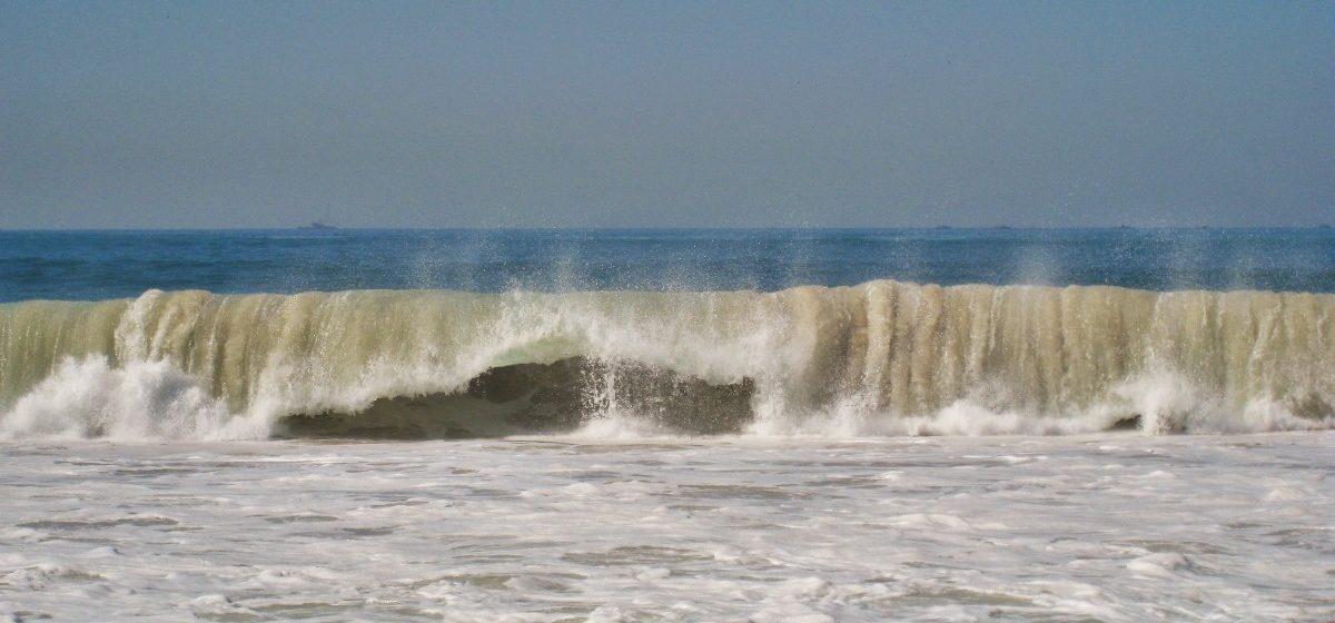 В Шотландии шторм выбросил на берег гигантский скелет неизвестного существа. Фото