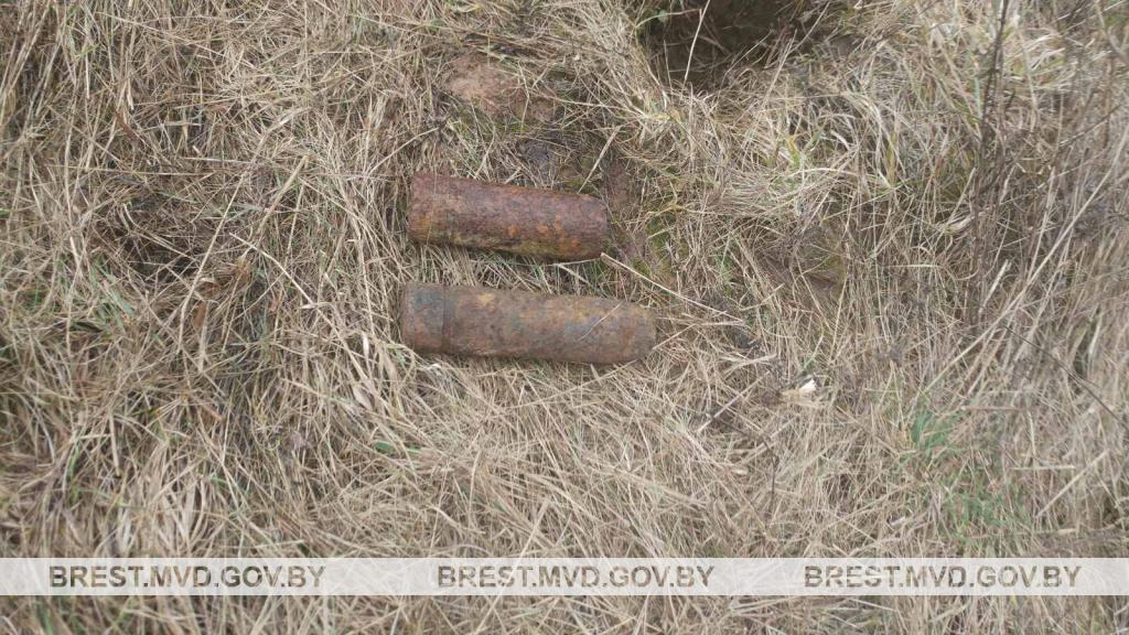 Найденные боеприпасы. Фото: brest.mvd.gov.by