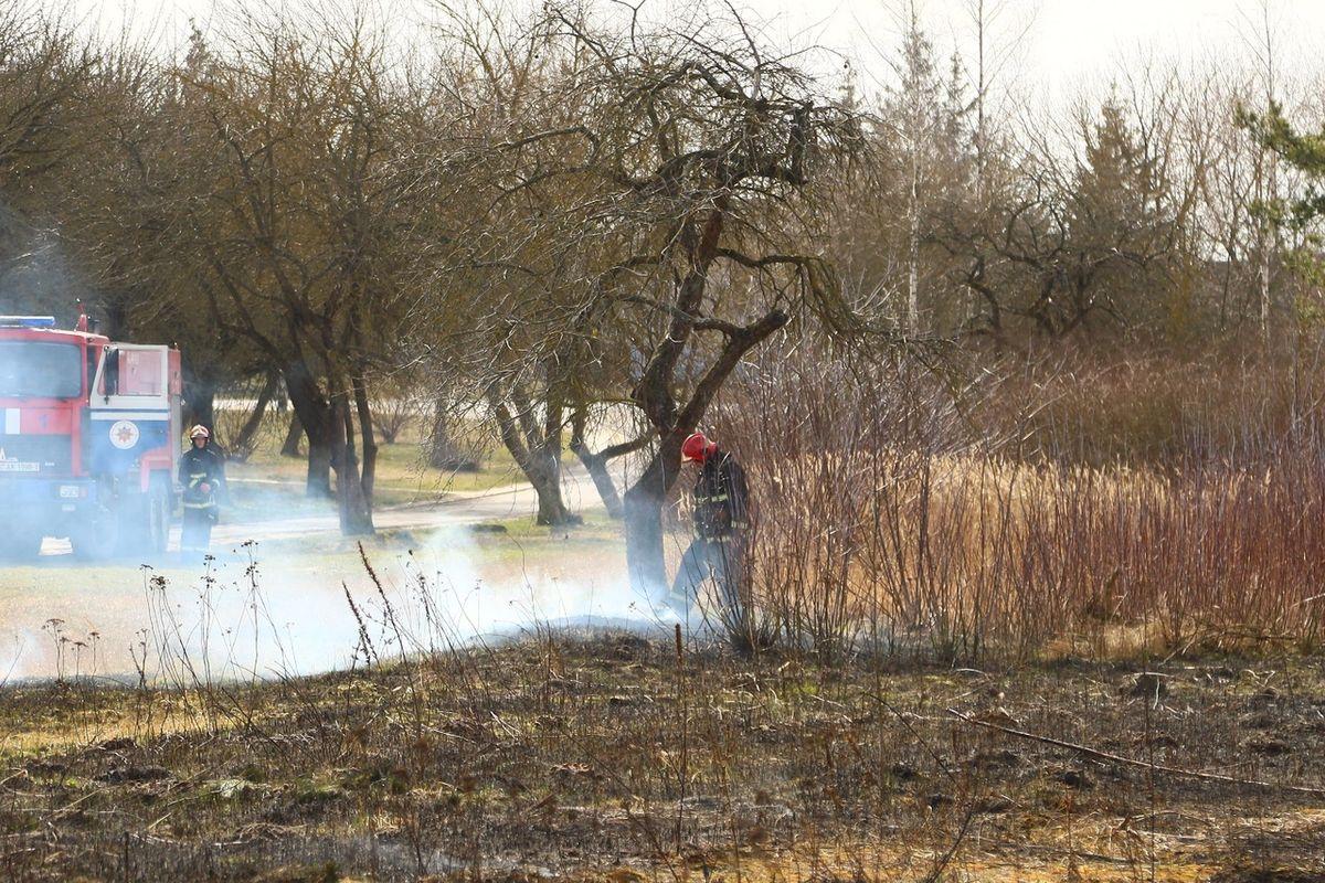 Загорание травы на пересечении улиц Бадака и Вильчковского. Фото: Татьяна МАЛЕЖ