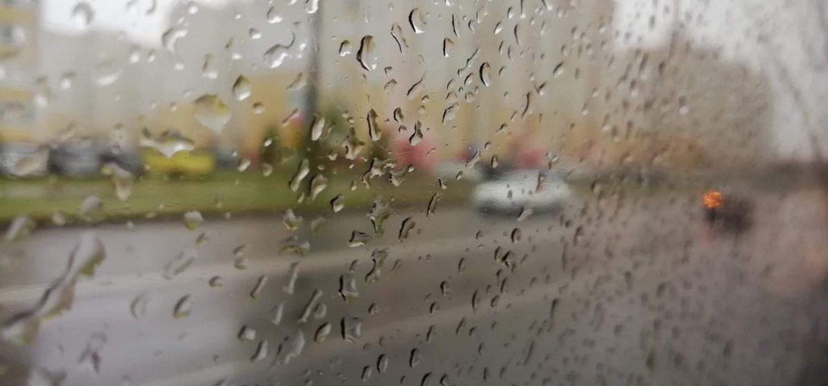 Ждать ли в выходные грибные дожди? Прогноз погоды на 26–28 сентября