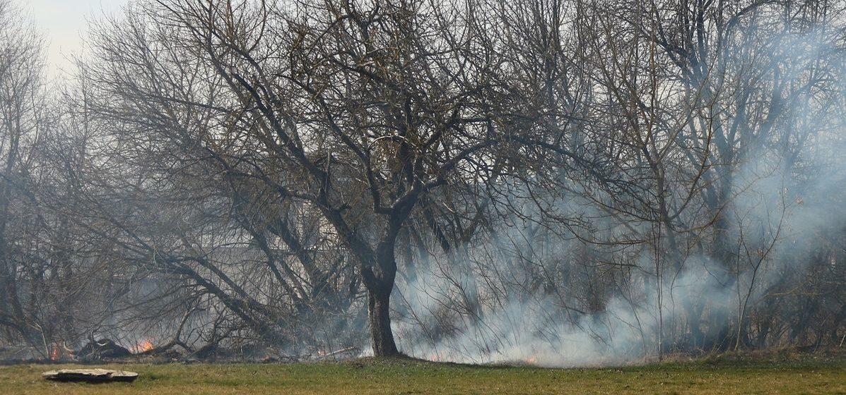 Три загорания за два дня. Сезон пала травы начался в Барановичском регионе