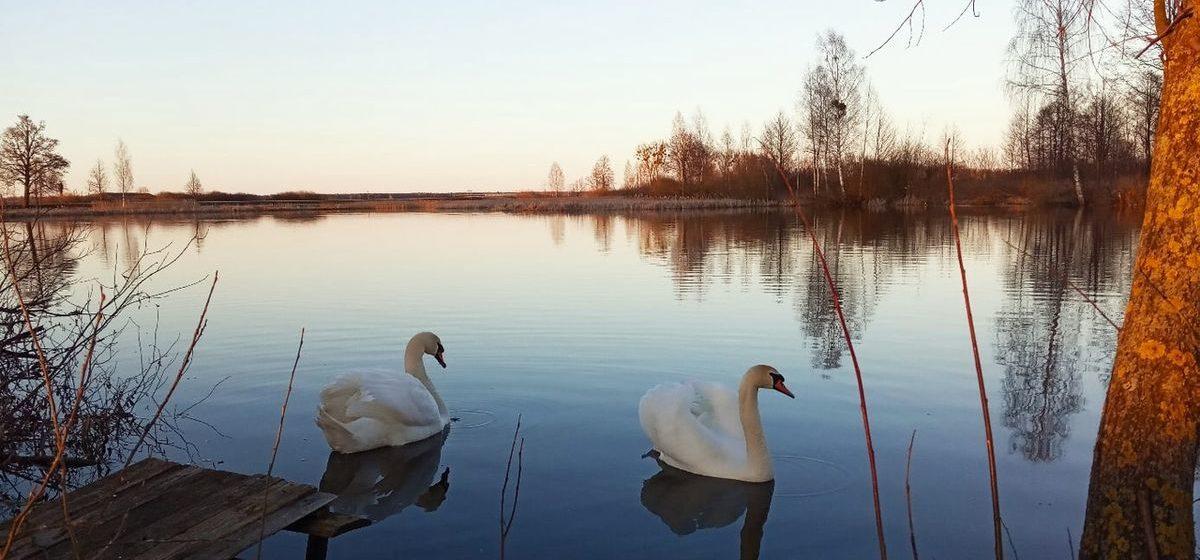 Какой будет погода в Барановичах в первый день апреля