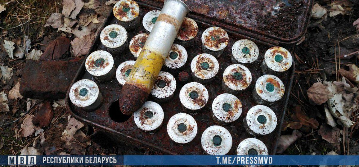 В лесу на Гомельщине милиция нашла тысячи немецких боеприпасов времен войны