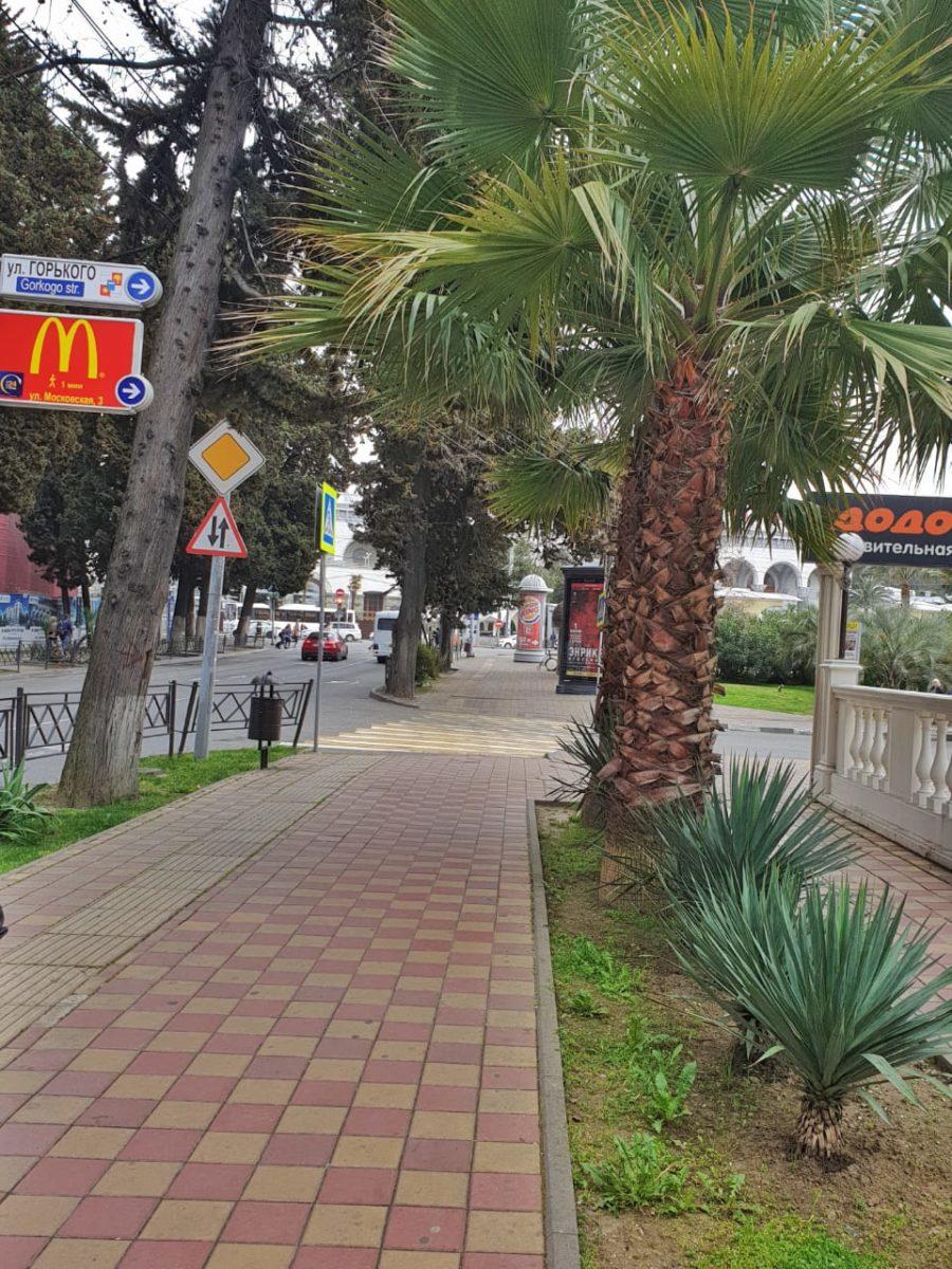 Пустые улицы в центре Сочи. Фото: Анна Романова-Колосовская