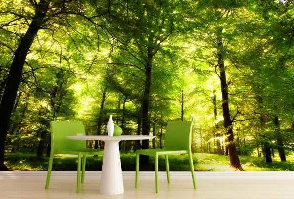 Лиственные деревья – универсальное решение для любого интерьера