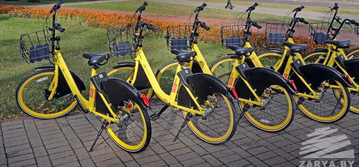 Много желтых велосипедов появится в Барановичах. Что это?