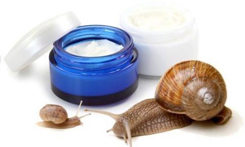 Улиточный крем: основные особенности и преимущества для кожи