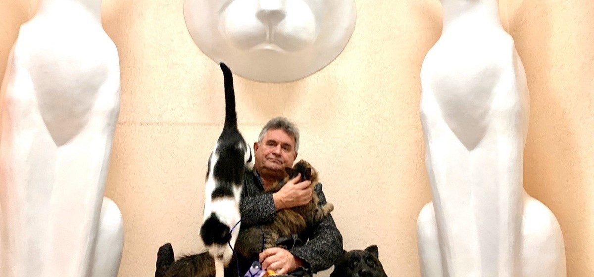 Как предприниматель из Барановичей создал одну из самых больших частных коллекций в мире, посвященную котам
