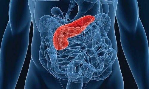 Пять распространенных симптомов болезней поджелудочной железы