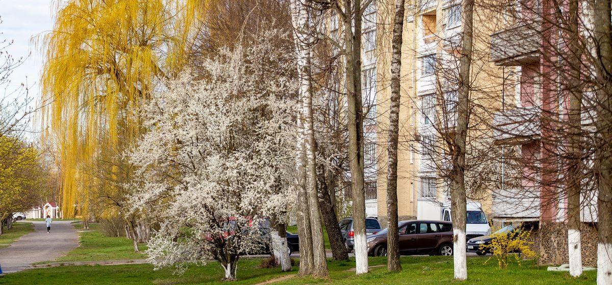 Что изменится в мае для жителей Барановичей и всех белорусов
