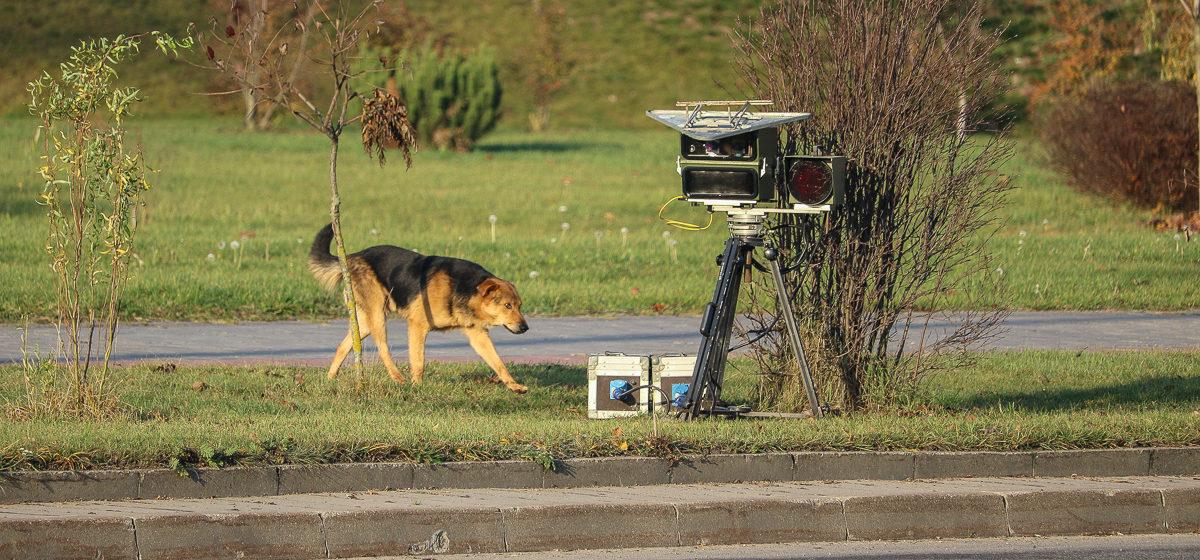 Где в Барановичах установят датчики контроля скорости