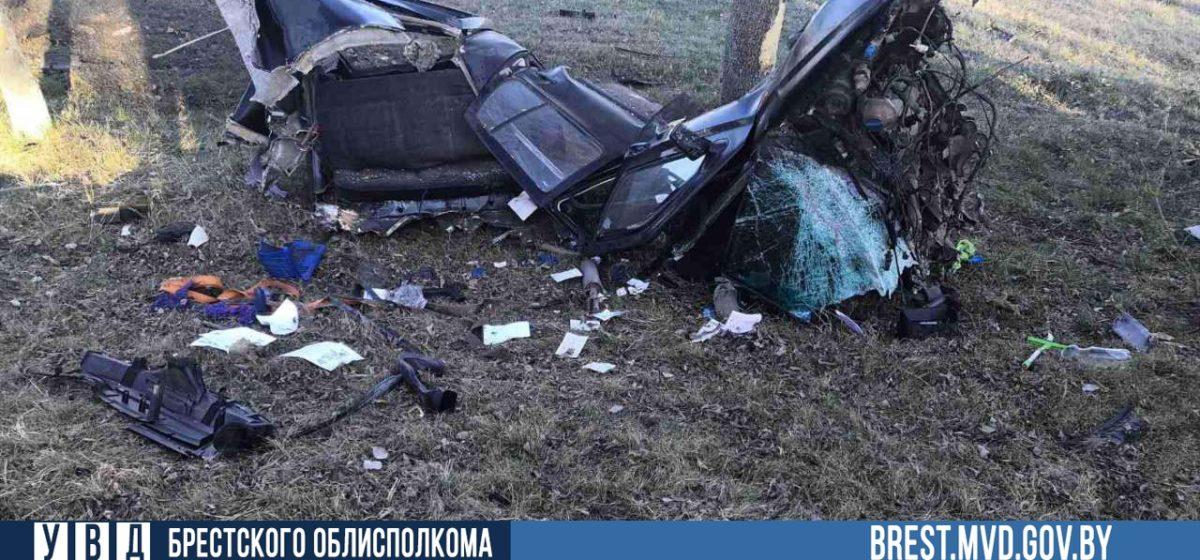 Под Брестом легковушку разорвало на части после столкновения с деревом — водитель чудом остался жив