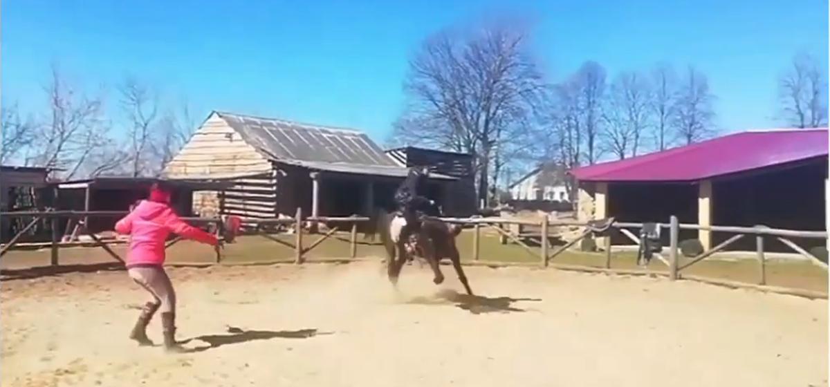 Видео дрессировки лошади в барановичском конном клубе возмутило защитников животных. Хозяйка клуба считает, что все нормально