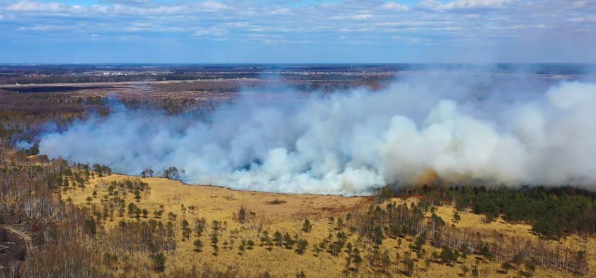 Под Брестом горел лес. Видео пожара с высоты