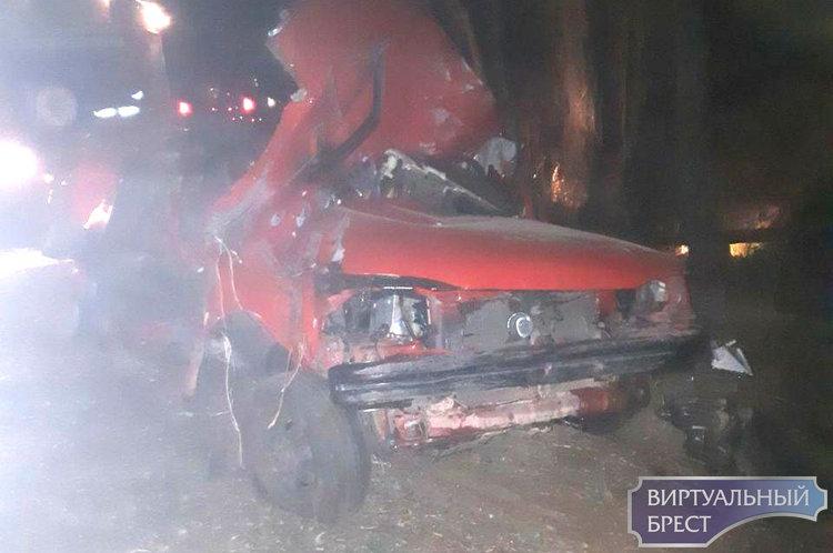 Под Брестом легковушка вылетела в кювет и врезалась в дерево — два человека погибли, один в реанимации