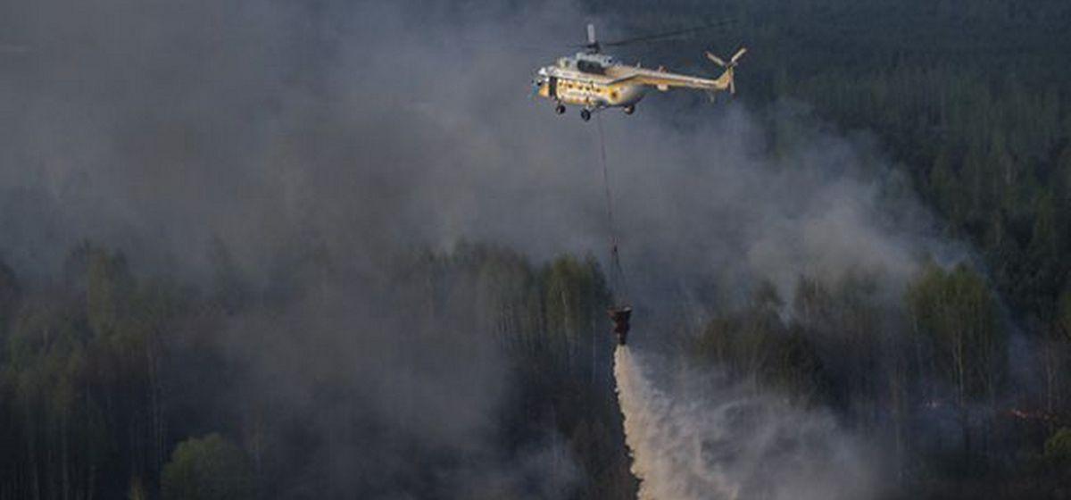 Пожар в Чернобыльской зоне. Фото: yatsenyuk.org.ua