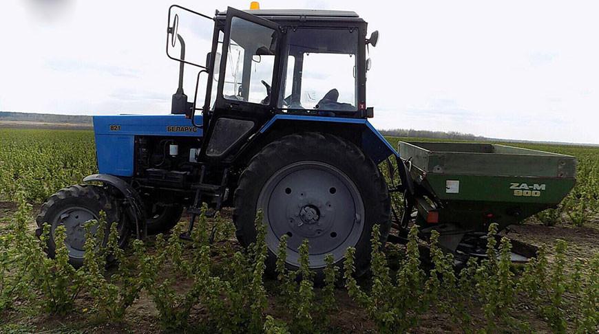 Трактористу раздробило ногу в Ляховичском районе
