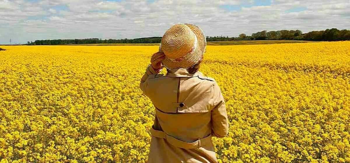 Цвет настроения – желтый. Барановичи в Instagram на фоне рапса
