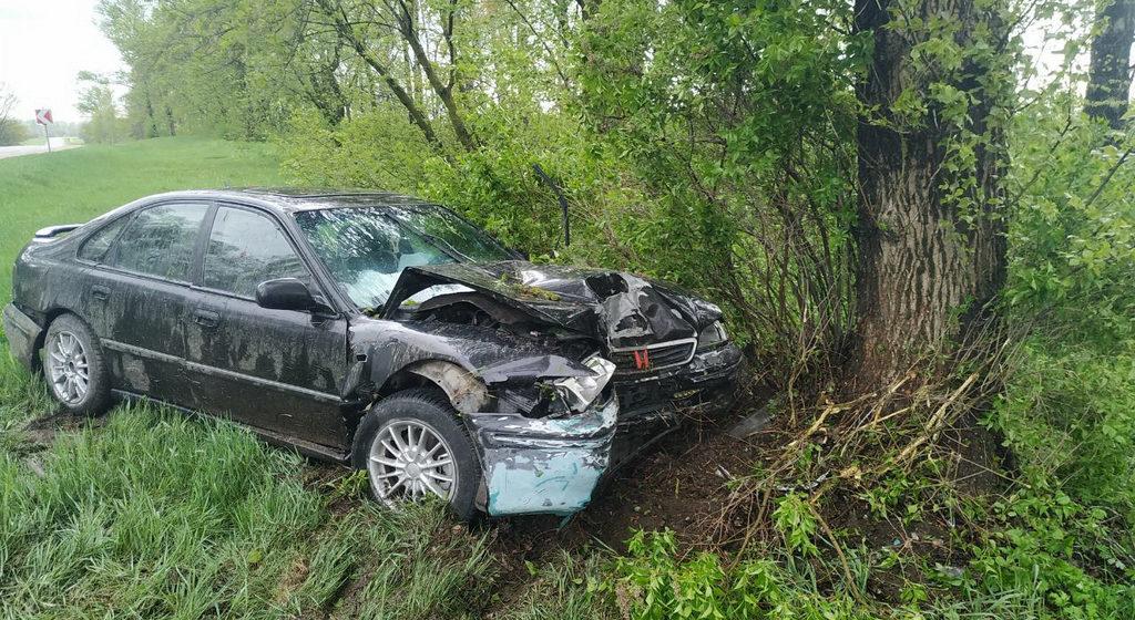 Легковушка вылетела в кювет и врезалась в дерево под Бобруйском — серьезно пострадали малолетние дети