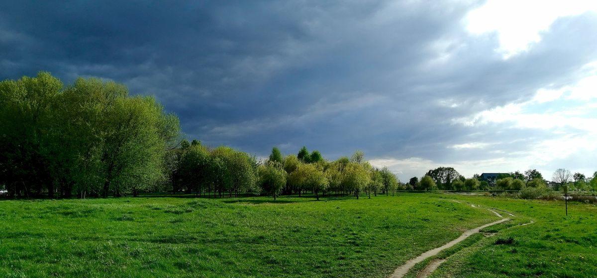 Какой будет погода в последние майские выходные в Барановичах?