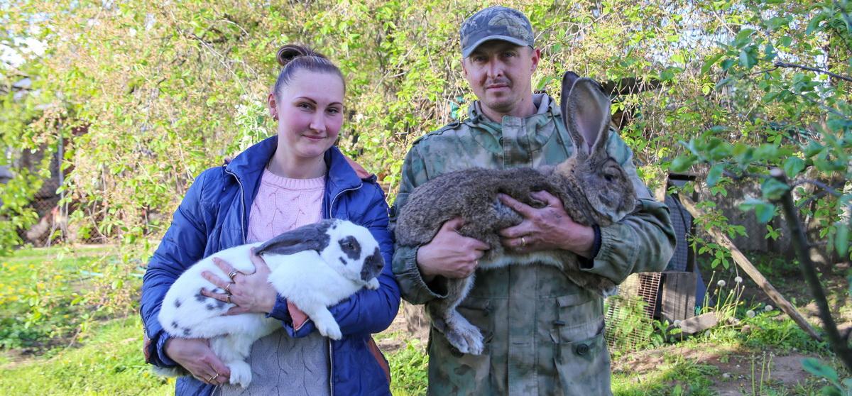 Мой бизнес. Как барановичская семья переехала в частный дом и стала зарабатывать на выращивании кроликов и перепелок