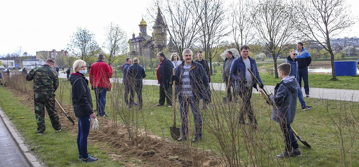 Белстат рассказал, сколько белорусов вышли на субботник и сбросились деньгами