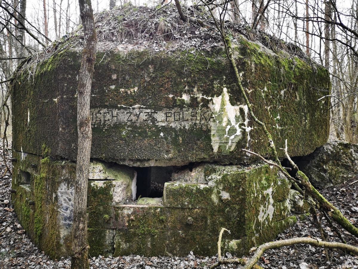 Польские бетонные укрепления в районе д. Арабовщина. Фото: Виктор БОРИСЕВИЧ Фото: Виктор БОРИСЕВИЧ