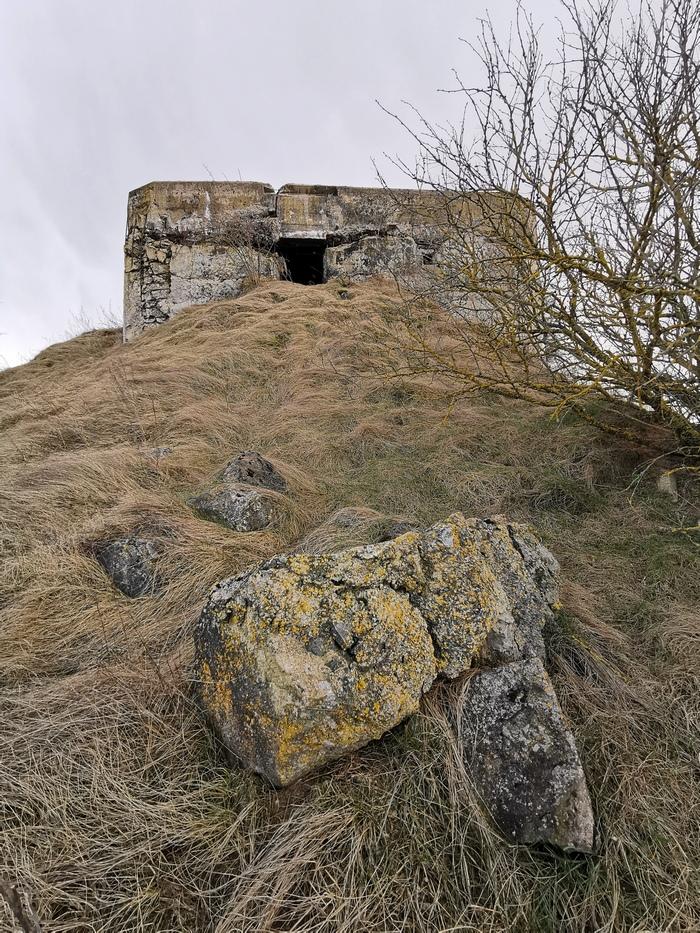 Бетонные укрепления в районе д. Дарево. Фото: Виктор БОРИСЕВИЧ