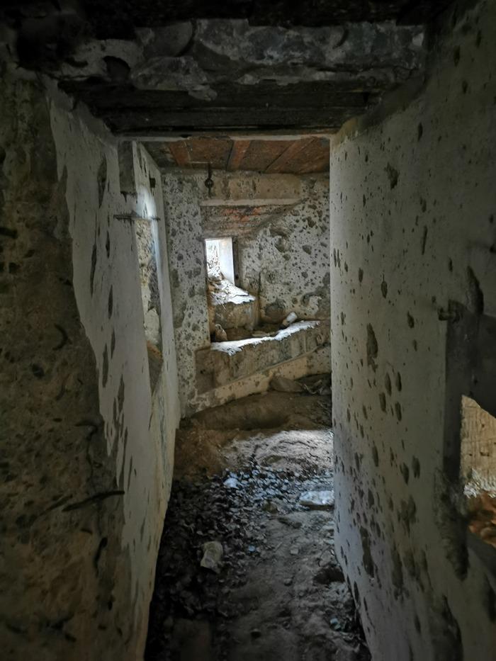 Внутри одного из бетонных укреплений в районе д. Дарево. Фото: Виктор БОРИСЕВИЧ