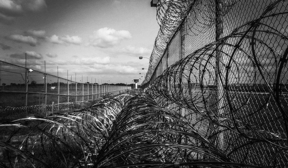 В МВД рассказали, сколько осужденных освободили по амнистии