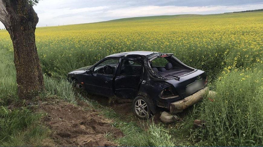 Под Гродно пьяный бесправник влетел в дерево, погиб 17-летний пассажир