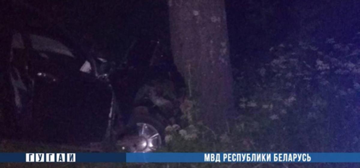 «Фиат» влетел в дерево в Лепельском районе – один человек погиб, второй в реанимации