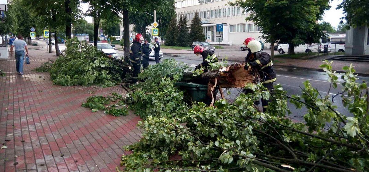 Последствия грозы в Барановичах. Фото, видео