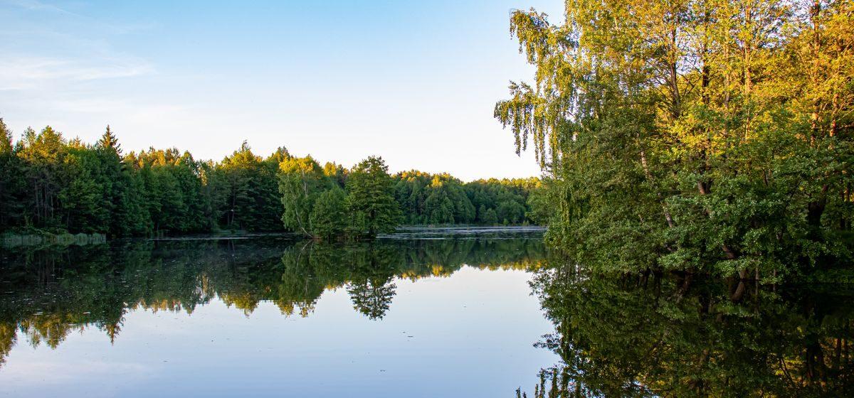 До +28°! Прогноз погоды на 6–8 июня в Барановичах