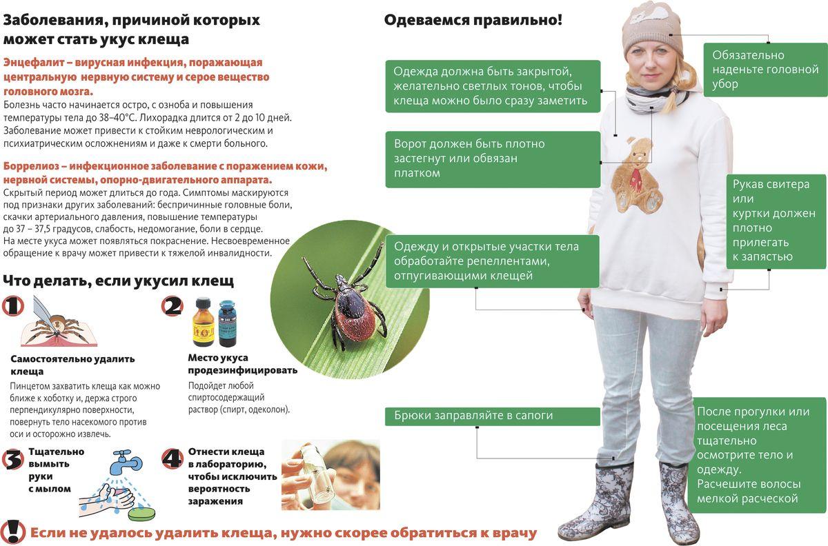 Инфографика: Intex-press