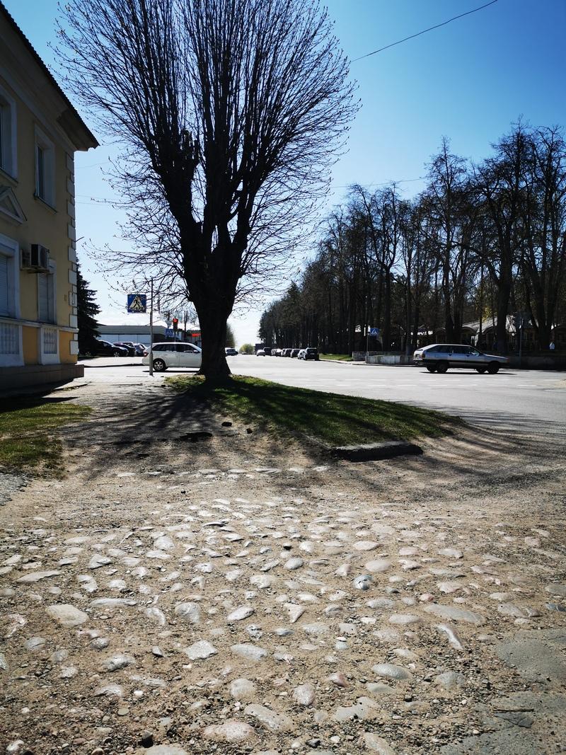 Кошачьи лбы на перекрестке Комсомольской и Калинина. Фото: Виктор БОРИСЕВИЧ