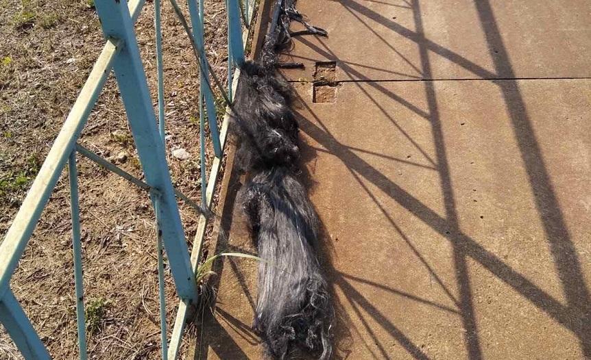 В Осиповичах школьник задел удочкой высоковольтный кабель и получил тяжелые ожоги
