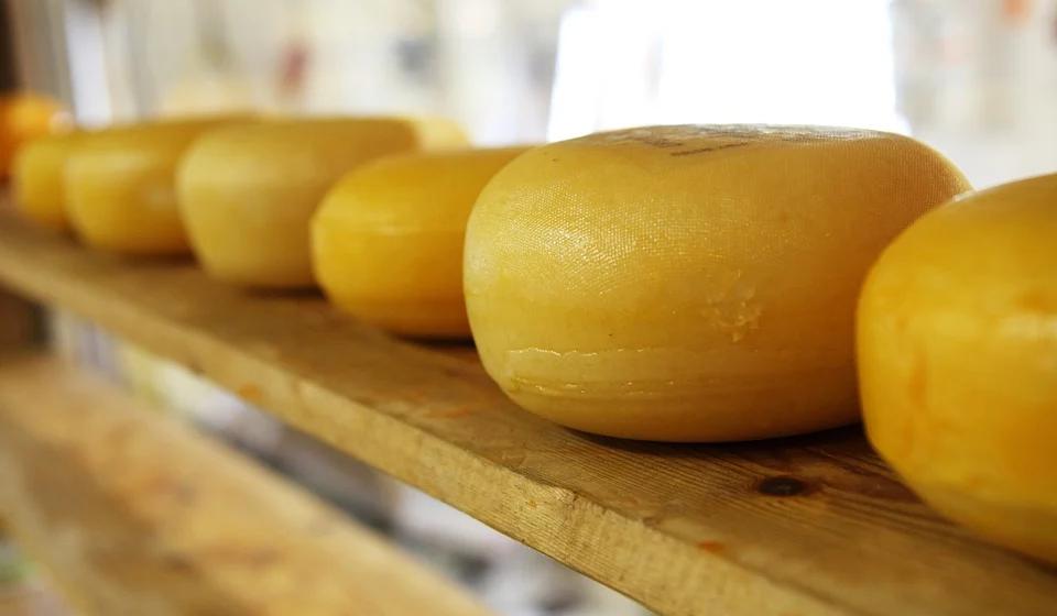 К каким проблемам может привести употребление сыра