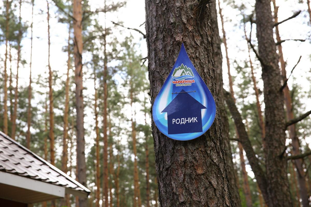 Указатель на специально организованном «Чараўніцай» веломаршруте протяженностью 7 км, который приведет к роднику.