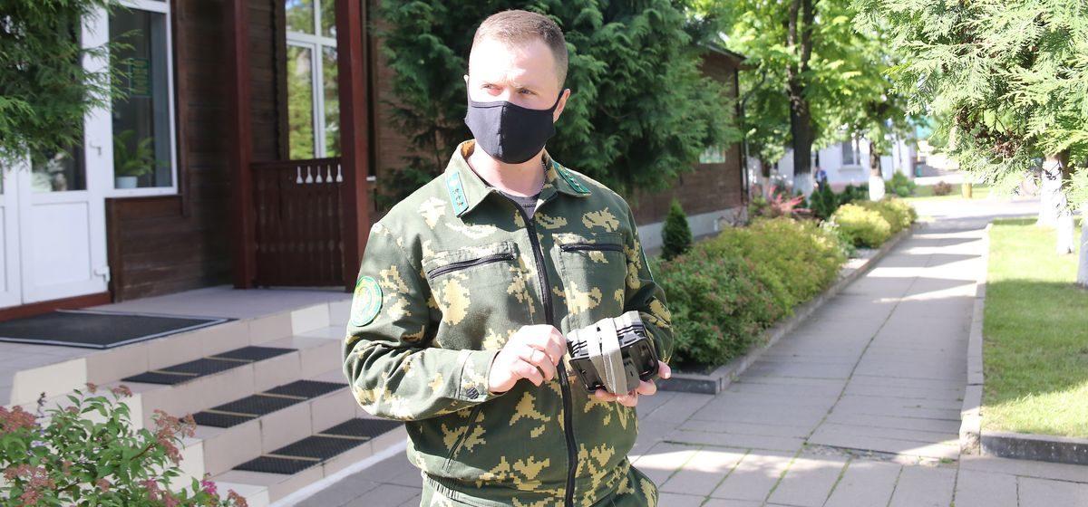 Сколько нарушителей помогли выявить фотокамеры в Барановичских лесах