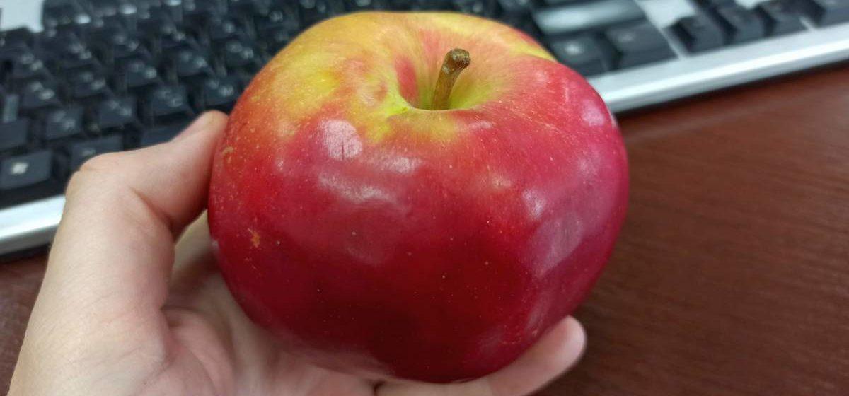 Яблоки нужно есть правильно: как потреблять фрукт с максимумом пользы