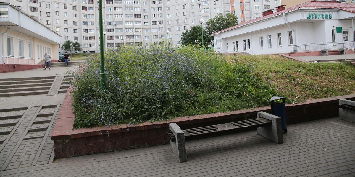 Бульвар Карвата. Фото: Андрей БОЛКО.