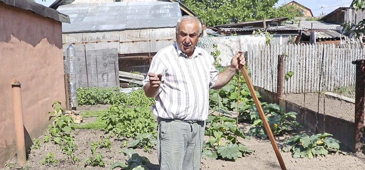 Что посеять в июле на освободившихся грядках и как защитить посевы от вредителей и болезней