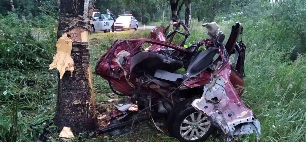 Страшная авария в Витебске: Нonda превратилась в груду металла после столкновения с деревом – погиб один человек
