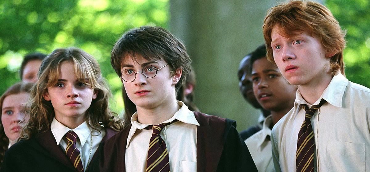 Тест. Что вы знаете о Гарри Поттере?