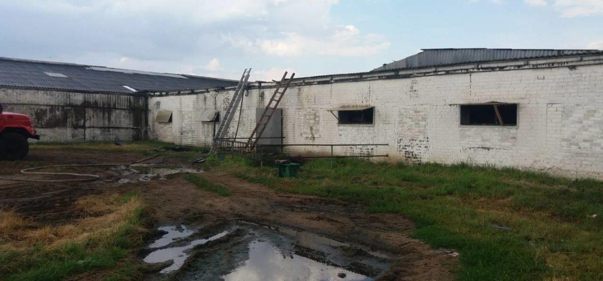 Кирпичный коровник горел в Барановичском районе. Фото